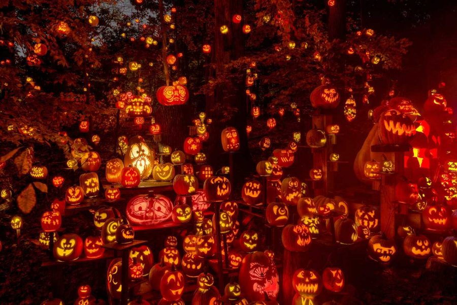 Do%27s+and+Don%27ts+of+Halloween