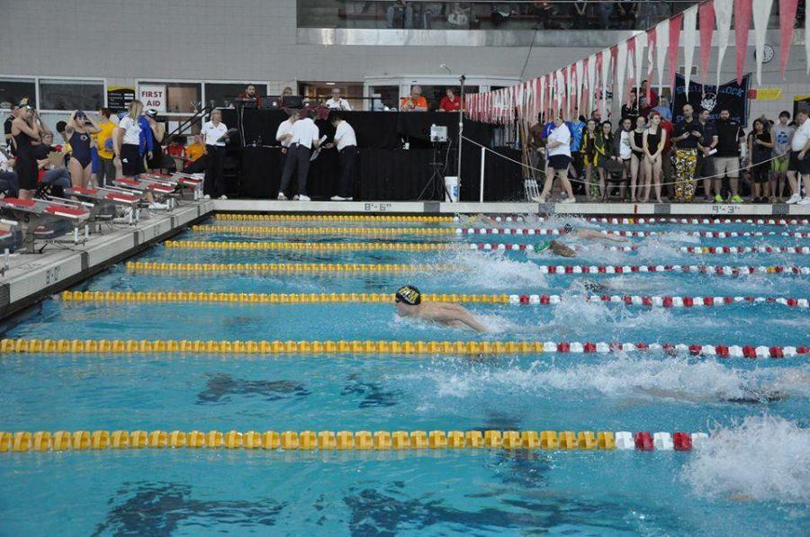 Photo Gallery: Swim & Dive State Championship Meet Swimming Photos