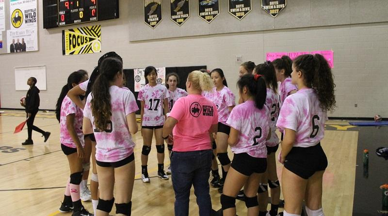 Volleyball+supports+the+fight+against+breast+cancer+in+their+annual+Dig+Pink+game