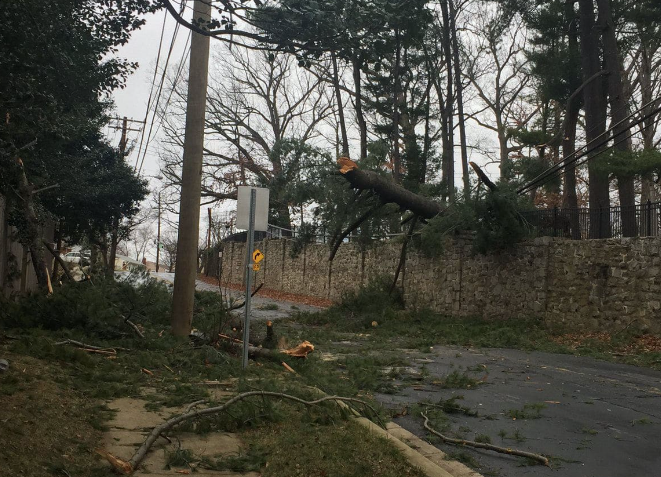 High winds halt classes and disrupt DC metropolitan region