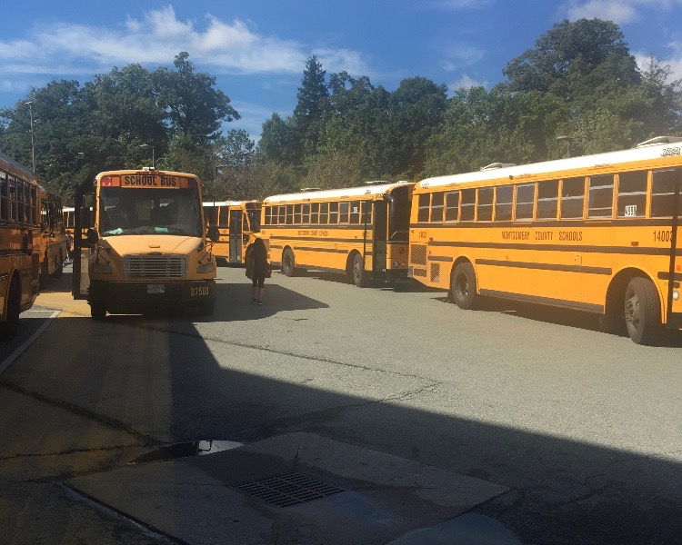 Buses+line+up+outside+of+Richard+Montgomery+High+School%2C+waiting+to+pick+up+students.