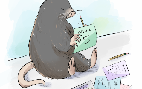 Students puzzle their way through Mole Week