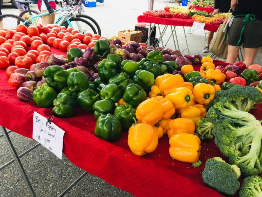 A+vendor+offers+a+wide+selection+of+bell+peppers+for+sale+to+buyers.