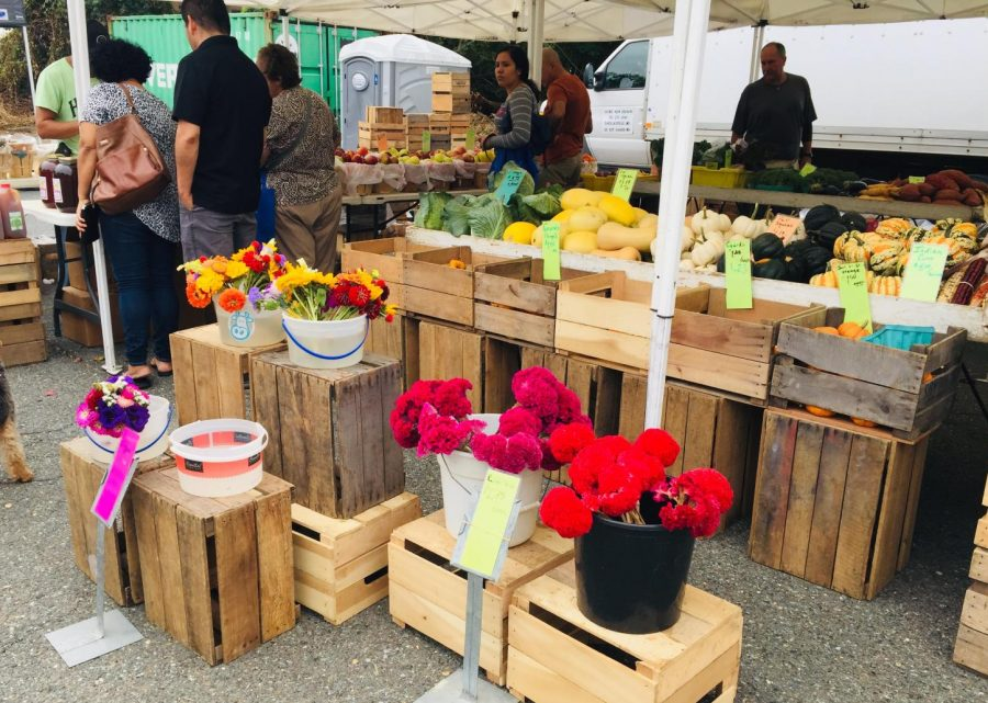 A variety of fresh produce appears at the farmers market each week.