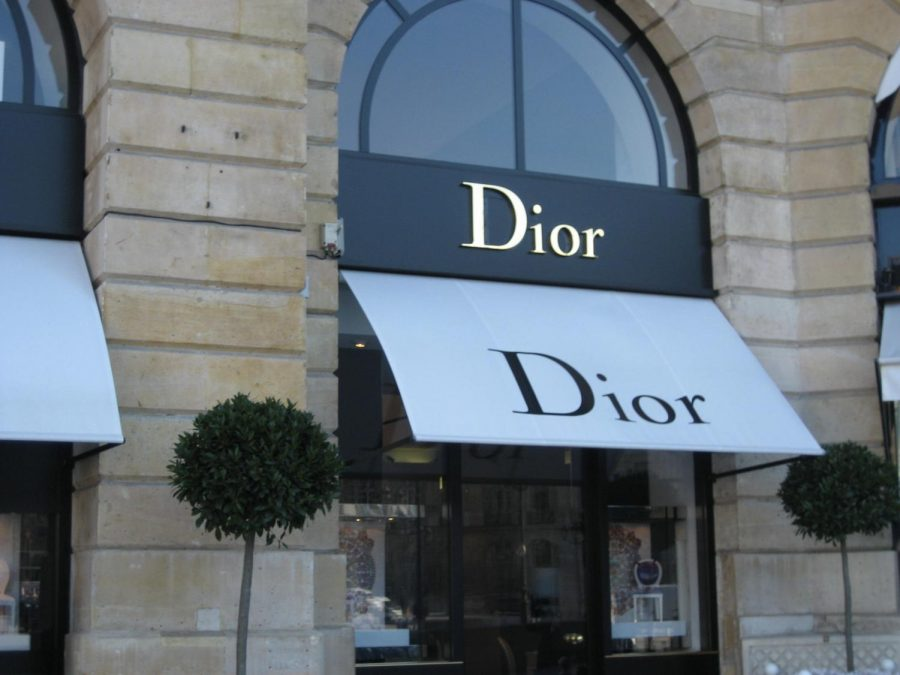Dior%2C+like+many+other+brands%2C+aimed+to+bring+up+topics+of+sustainability+in+fashion+through+their+Fall+2020+runway+shows.