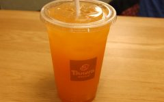 Panera recently replaced their plastic straws with