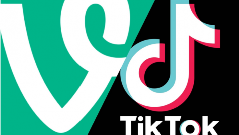 TikTok will never truly replicate the environment of Vine.