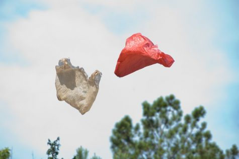 Maryland is the most recent state to move towards banning single-use plastic bags after a majority vote in the House of Delegates to prohibit retailers from providing plastic bags to consumers on March 11.