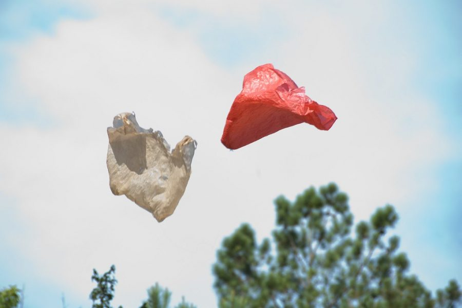 Maryland+is+the+most+recent+state+to+move+towards+banning+single-use+plastic+bags+after+a+majority+vote+in+the+House+of+Delegates+to+prohibit+retailers+from+providing+plastic+bags+to+consumers+on+March+11.