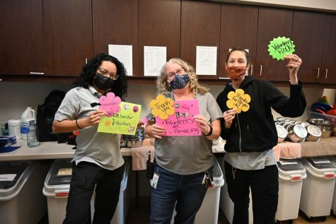 The MCASAC staff celebrated the hard work of their dedicated volunteers during volunteer appreciation week last month.