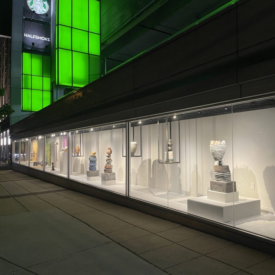 Megan Van Wagoner's portfolio, Growing Dilemma, is open until July 25 at the Pod Space Gallery in Rockville.